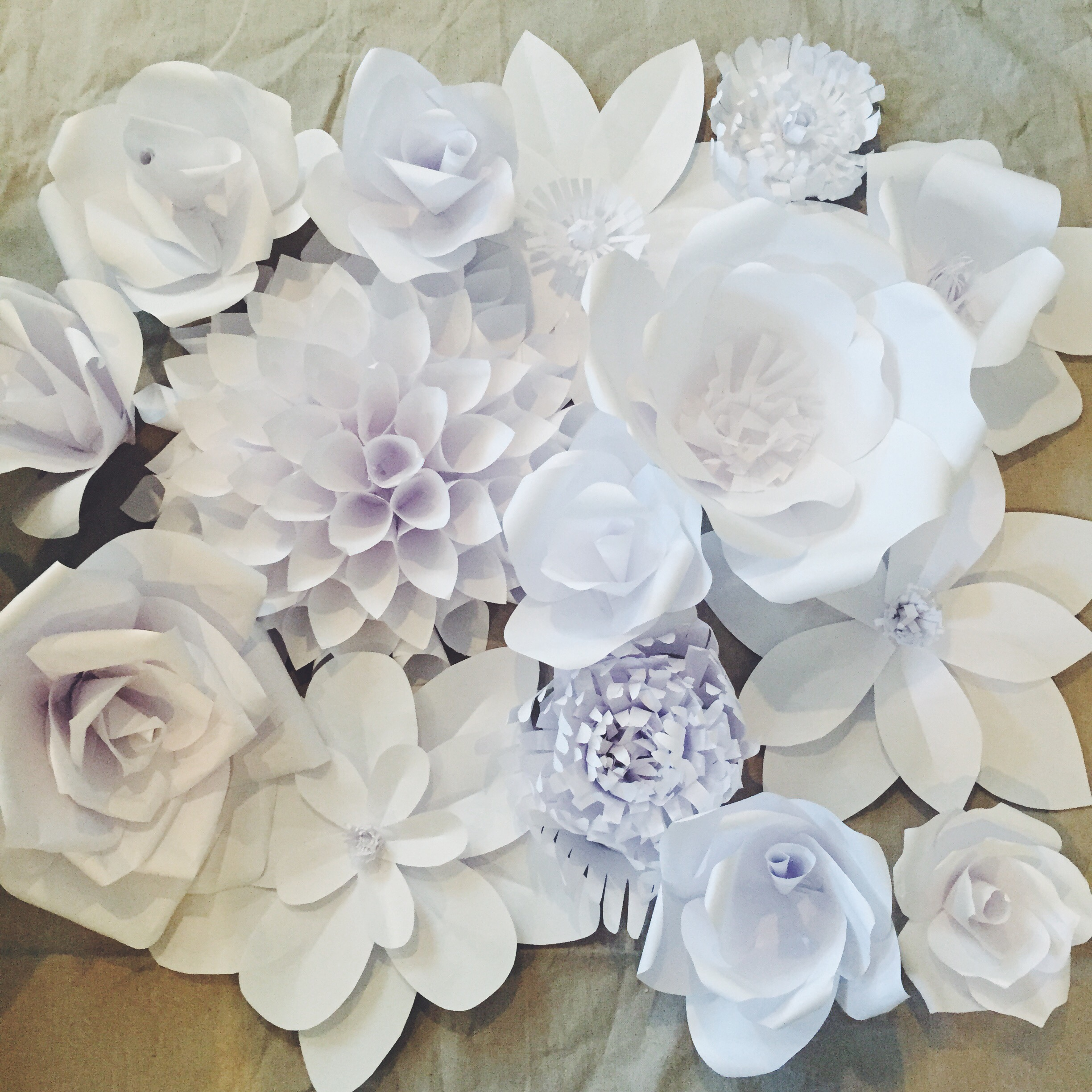 Paper Flower Backdrop: Flower 1 - Ash and Crafts