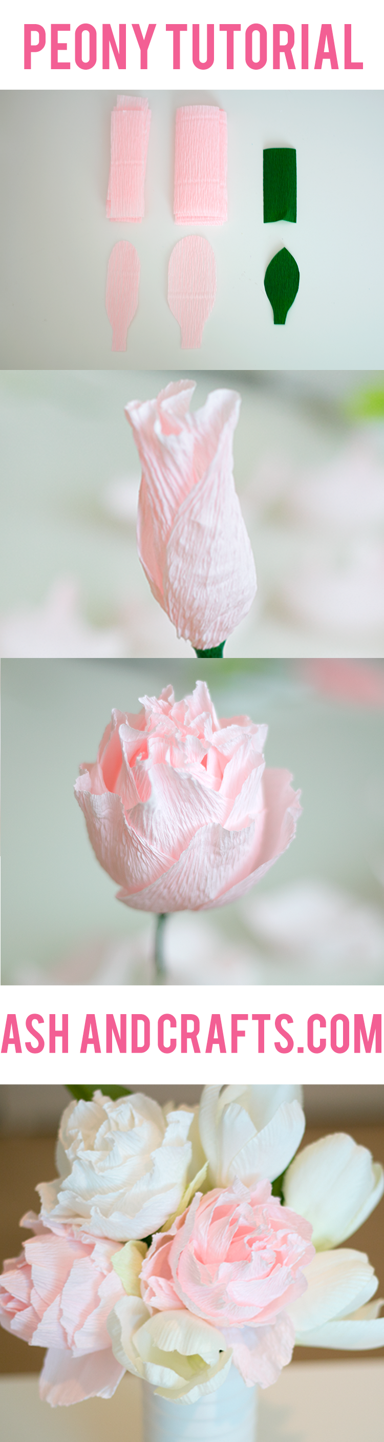 Paper peony tutorial ash and crafts jeuxipadfo Choice Image