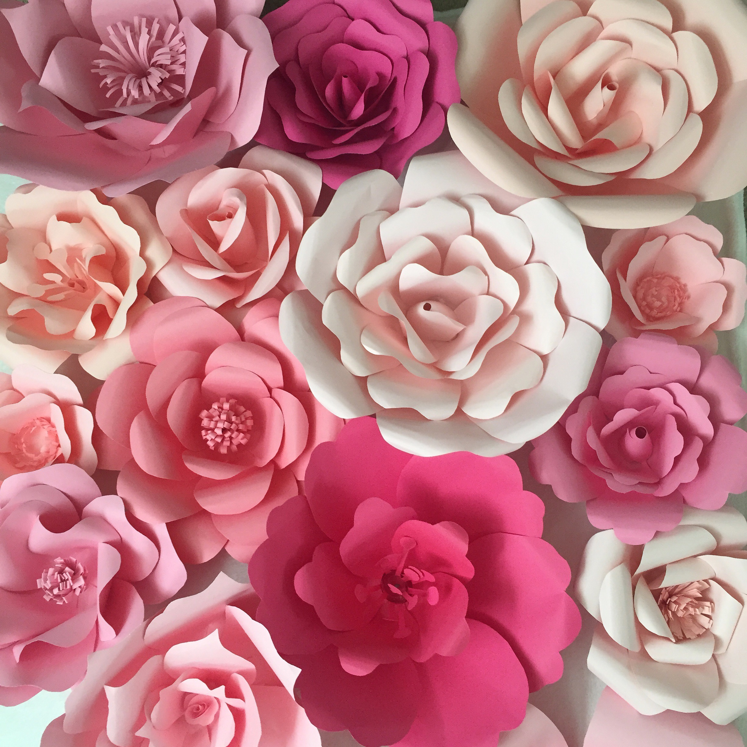 Diy giant paper flower yelomdiffusion paper flower backdrop ash and crafts mightylinksfo