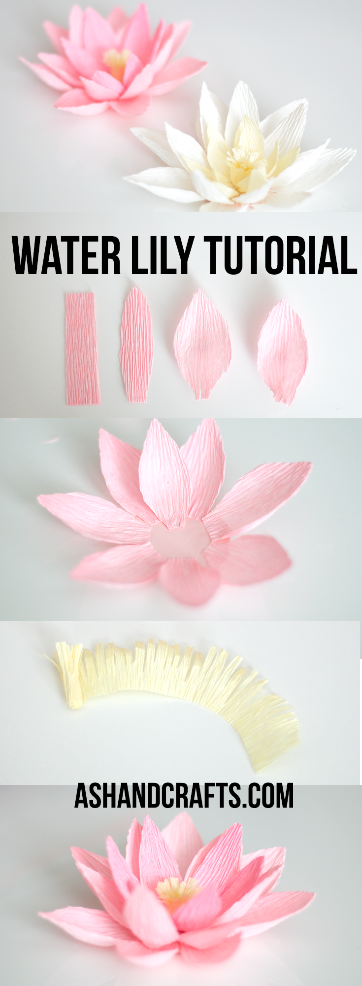 Crepe paper water lily ash and crafts crepe paper water lily tutorial ashandcrafts izmirmasajfo Gallery