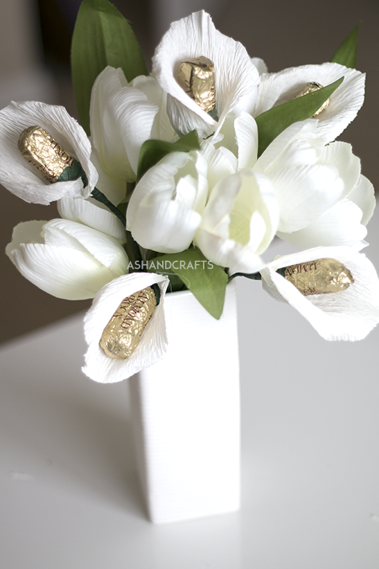 Learn How To Grow And Care For Calla Lily Flowers