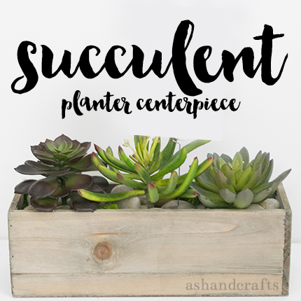 Succulent Planter Centerpiece Tutorial | ashandcrafts.com
